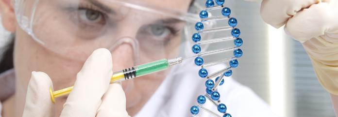 Yeni Yüzyıl Üniversitesi Klinik Embriyoloji