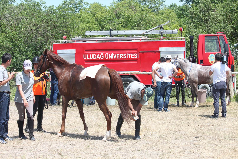 Uludağ Üniversitesi Mennan Pasinli MYO
