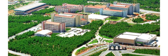 Image result for muğla sıtkı koçman üniversitesi seydikemer
